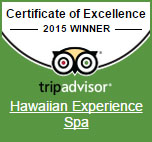 2015 excellence award for Hawaiian Experience Spa