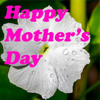 Mothers-day-gift-card-4