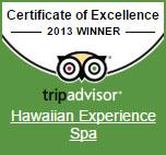 2014 excellence award for Hawaiian Experience Spa