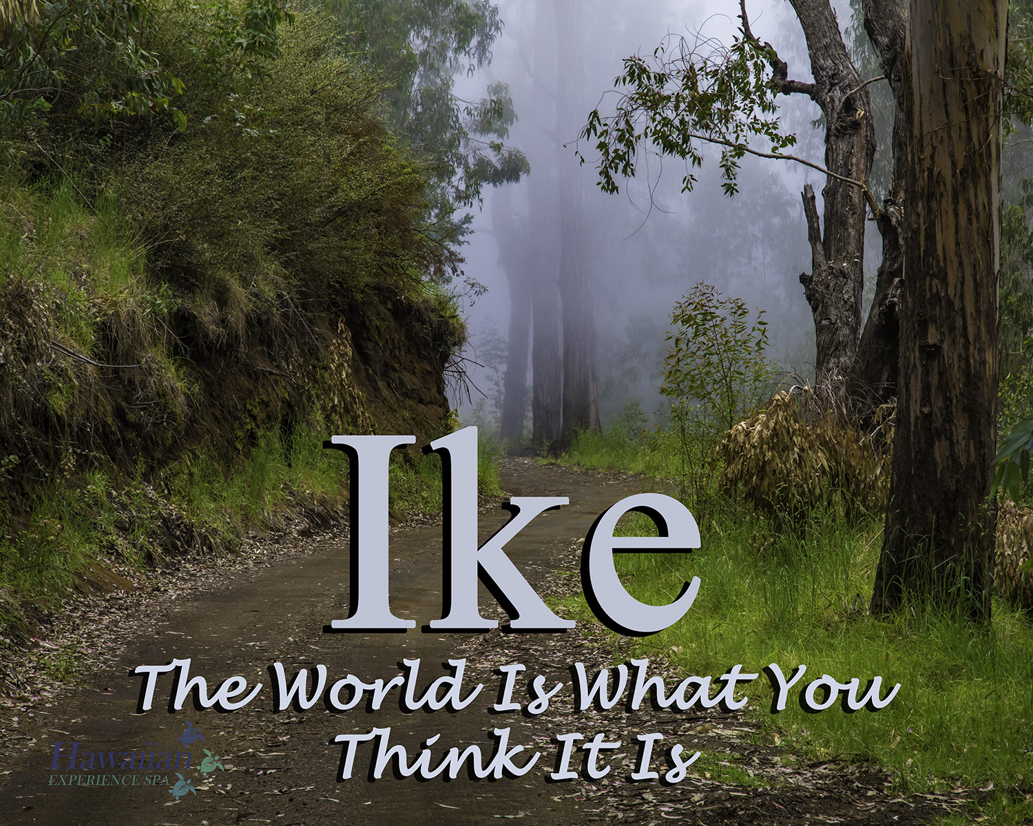Ike - The World Is What You Think It Is