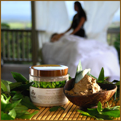 Kaua'i Clay Body Mask